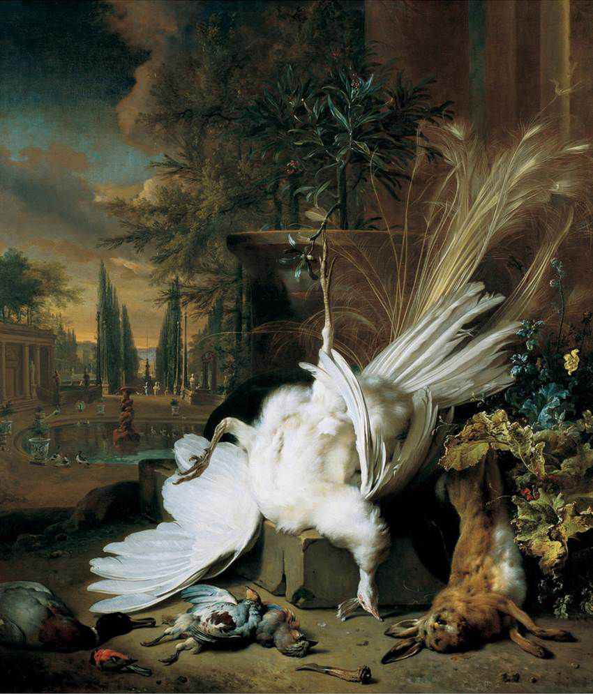 El pavo real blanco, Jan Weenix