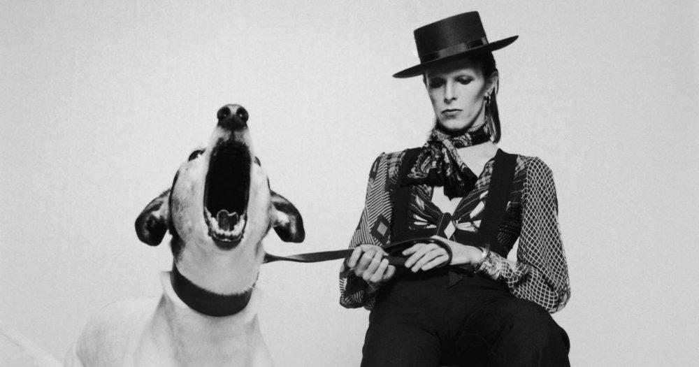 Greenman-Beautiful-Meaninglessness-of-David-Bowie-1200x630-1452293023.jpg
