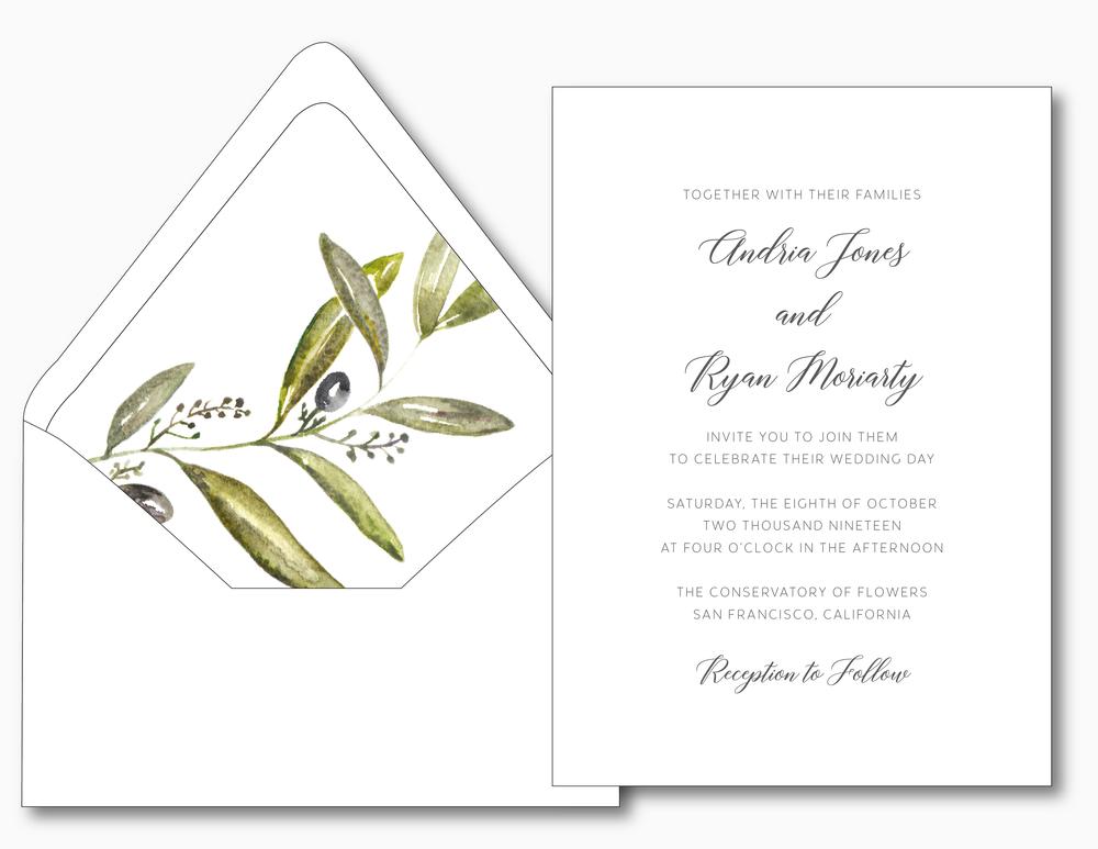 Olive Branch V2