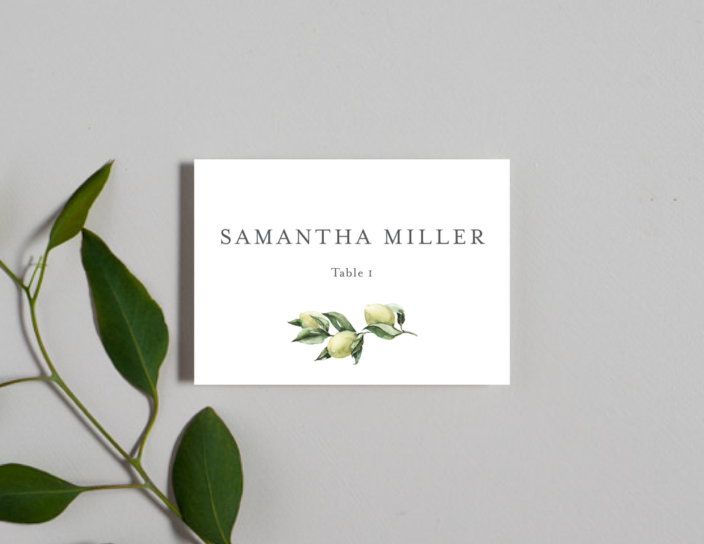 Mediterranean Place Cards by Just Jurf-01.png