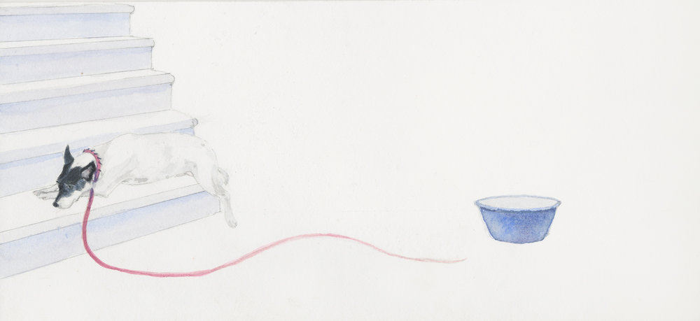 """Red at Rest, 5.5"""" x 13"""", watercolor on paper, 2014"""