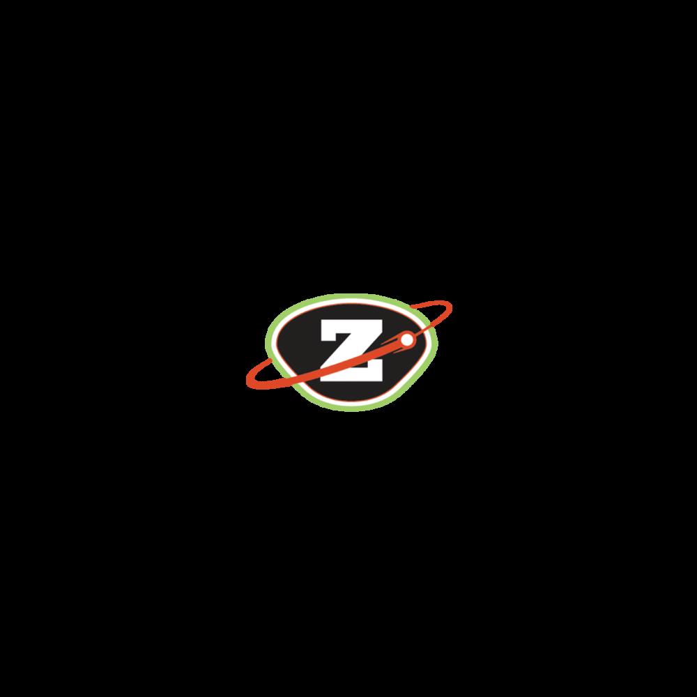 Zeeks Testimonial.png