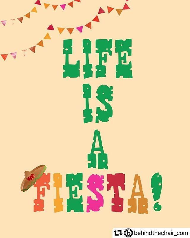 Happy Cinco de Mayo! 🌵