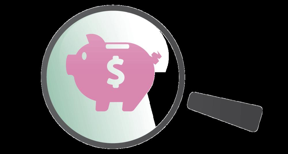 magnify-piggy-bank-long.png