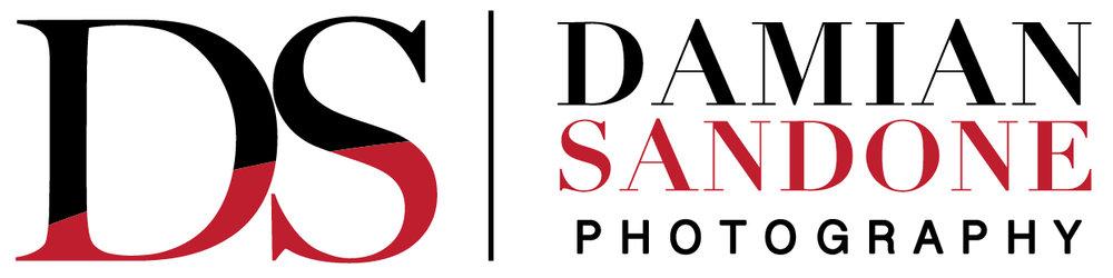 Damian Sandone Logo.JPG