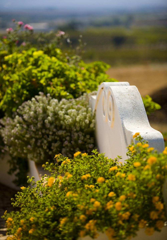 Jardim e banco 1.jpg