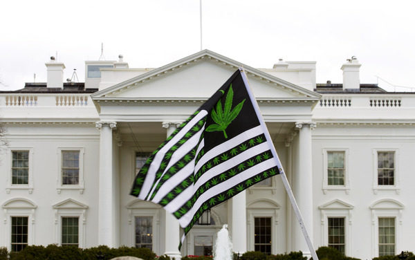 pot-flag-at-white-house-rally