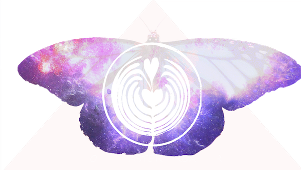 4247522-butterfly-Recovered.png