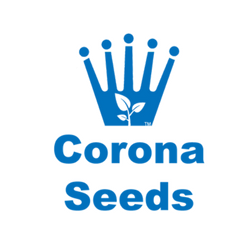 Corona Seeds.png