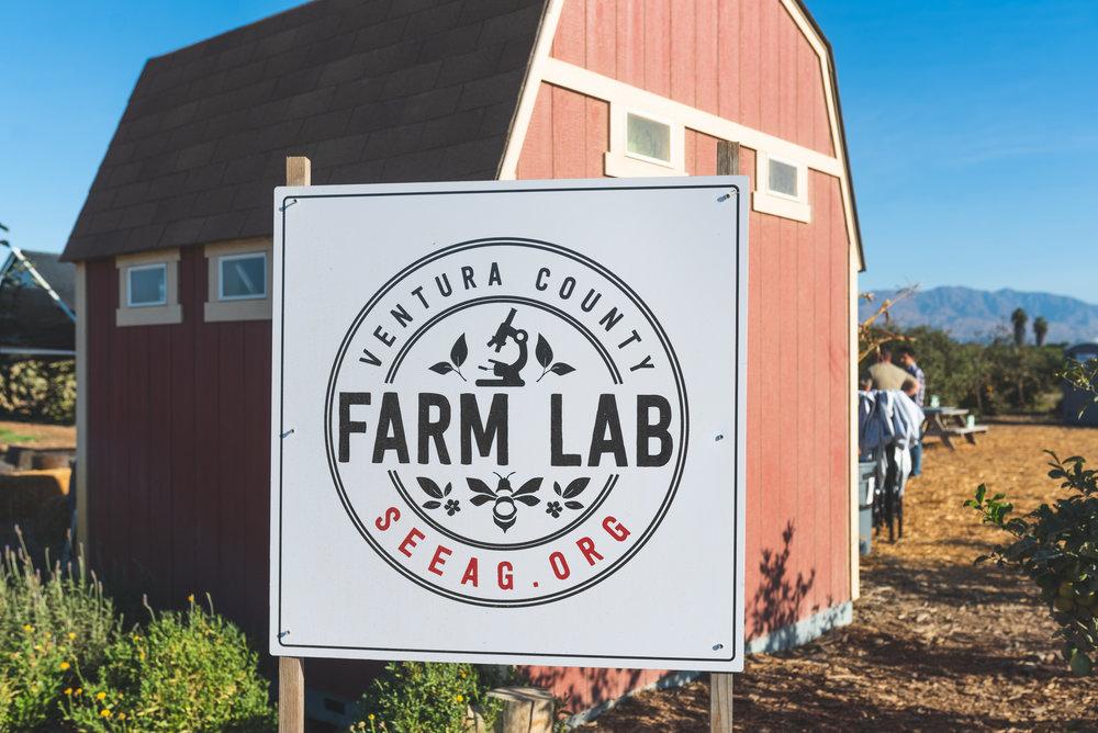 Farm-Day-2018-15.jpg
