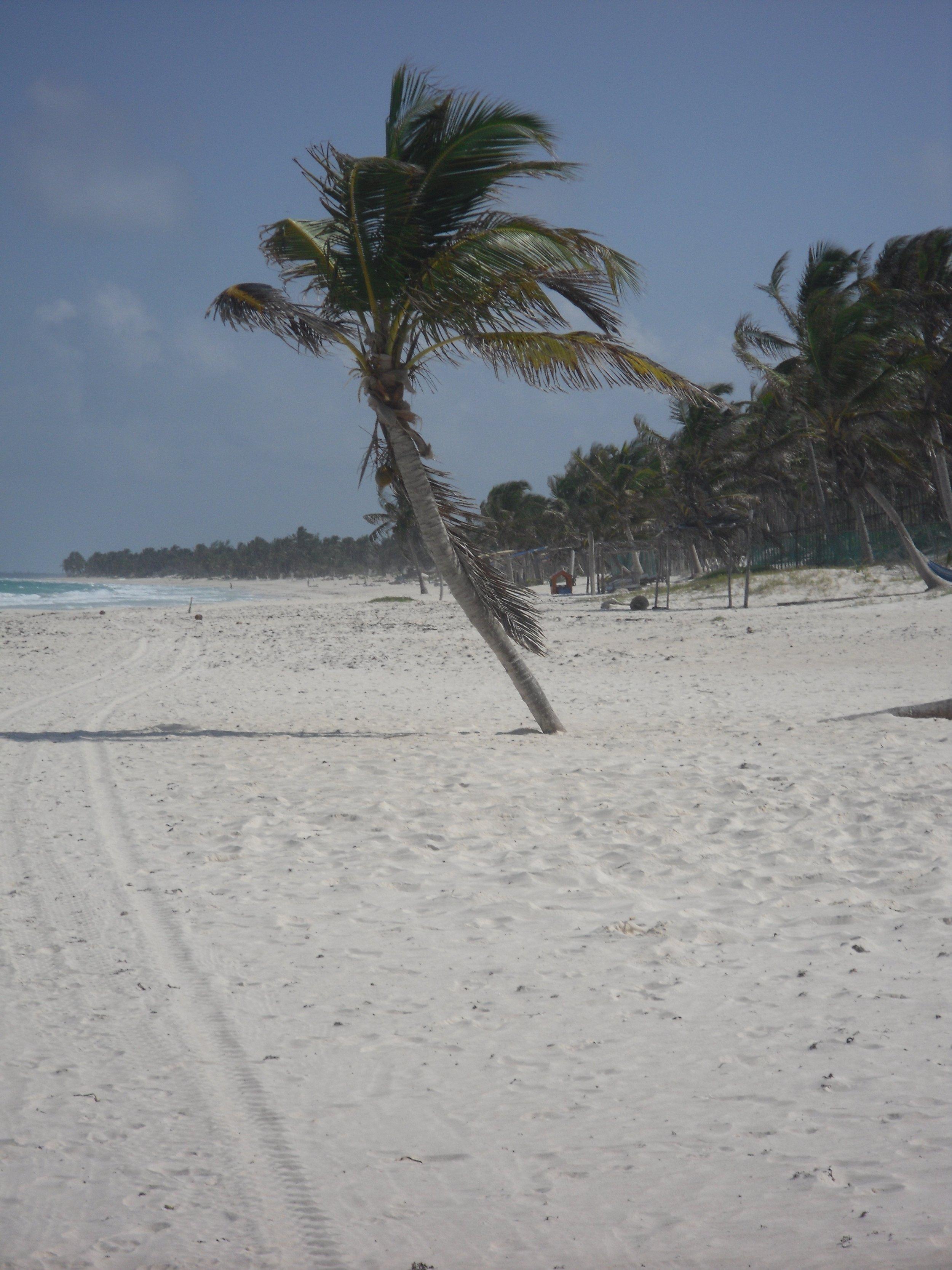 suenos-beach