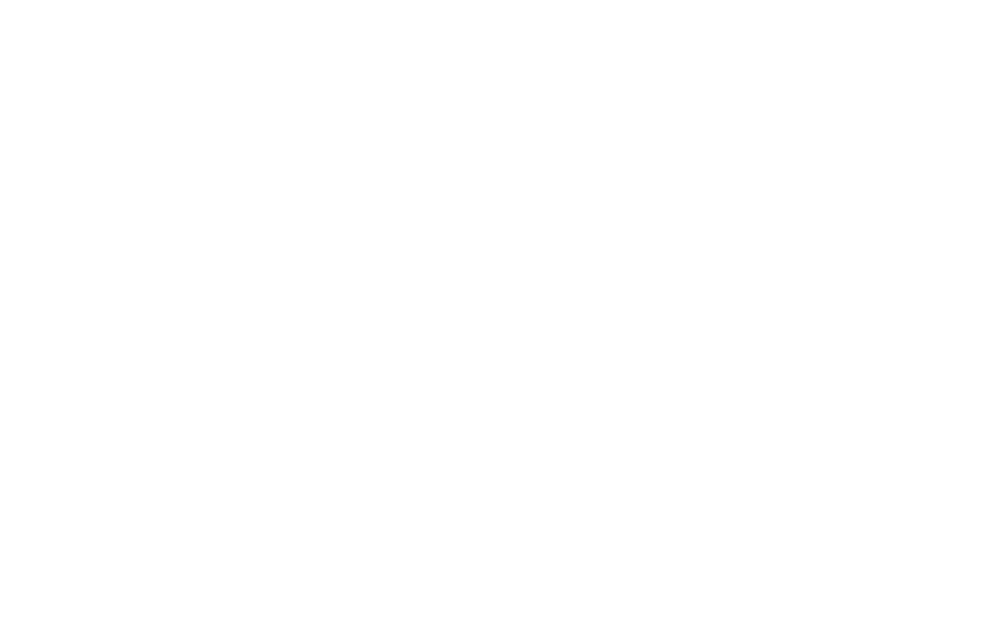 SecureNet-white-logo.png