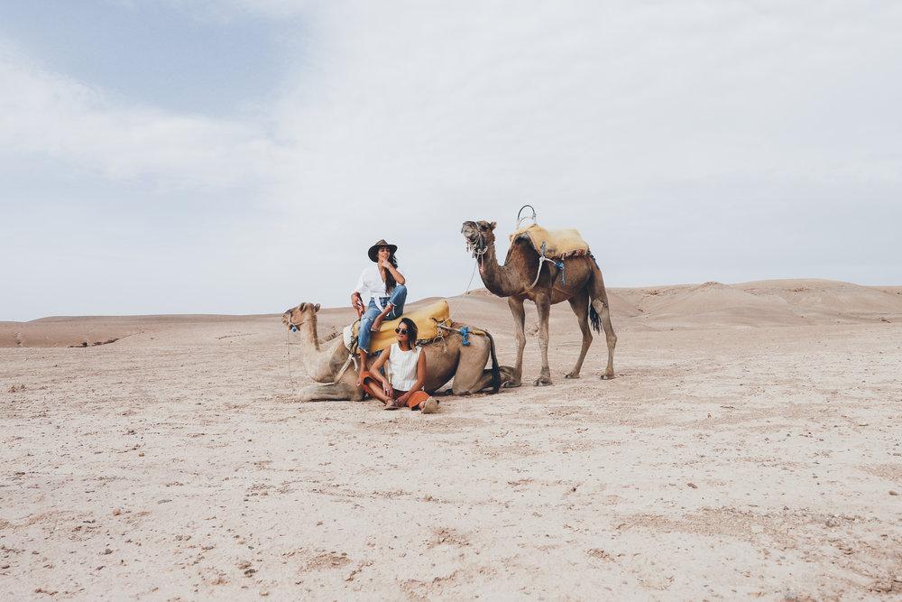 weare.morocco.leia.10.17-177.jpg