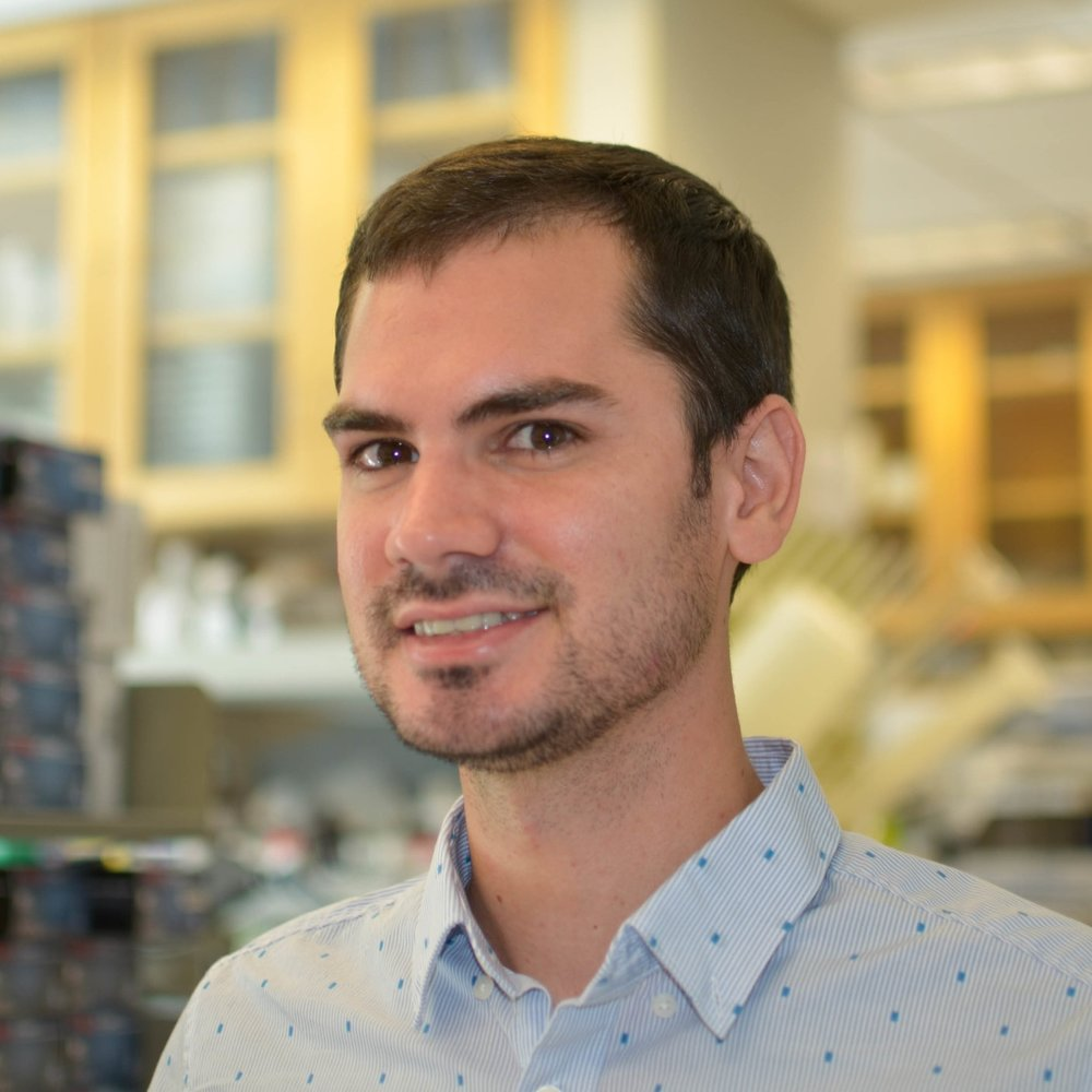 Kameron Rodrigues - Graduate StudentKameron graduated with his B.S. from the University of Arizona in 2014, double majoring in Biochemistry and Molecular & Cellular Biology. He worked for 3 years as a post-baccalaureate fellow at the National Institutes of Health, conducting both wet and dry lab research. Now, Kameron is a graduate student studying Computational and Systems Immunology within the Immunology program at Stanford. He is interested in researching the effects of human genetic variation on the immune system during the pathogenesis of common complex diseases. Kameron is co-mentored by Stephen Montgomery and Siddhartha Jaiswal.