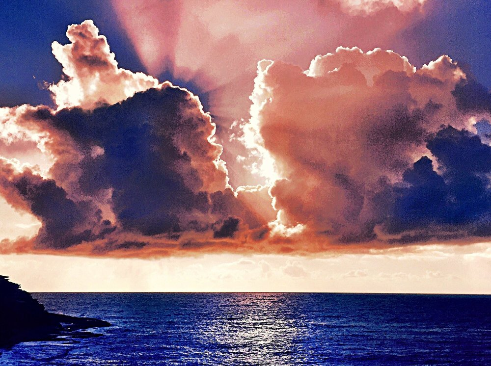 Tama+morning+light.jpg