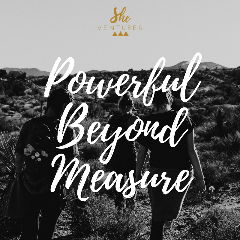 Beyond Measure SV.png