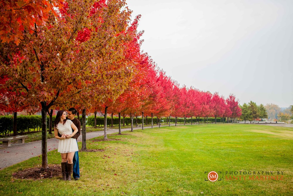 St Louis Engagement Session - Santy Martinez -0018.jpg
