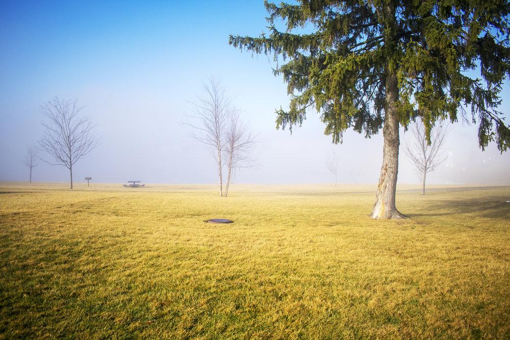 Misty Morning at Lakota Lake Apartments
