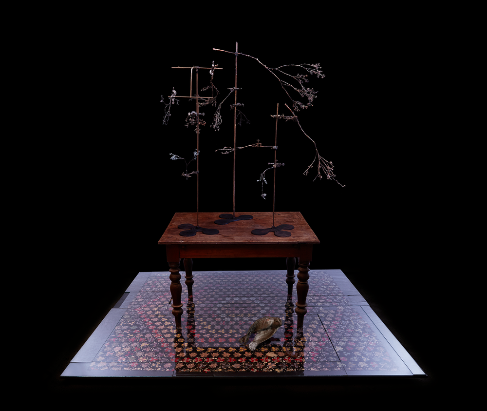 Louiseann-King-arbor-temporis-momentum-genere-01.png
