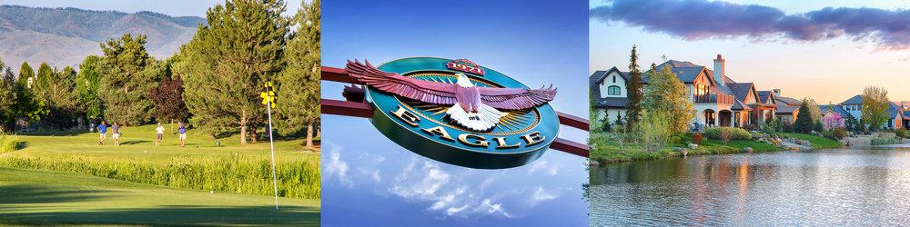 eagle-banner.jpg