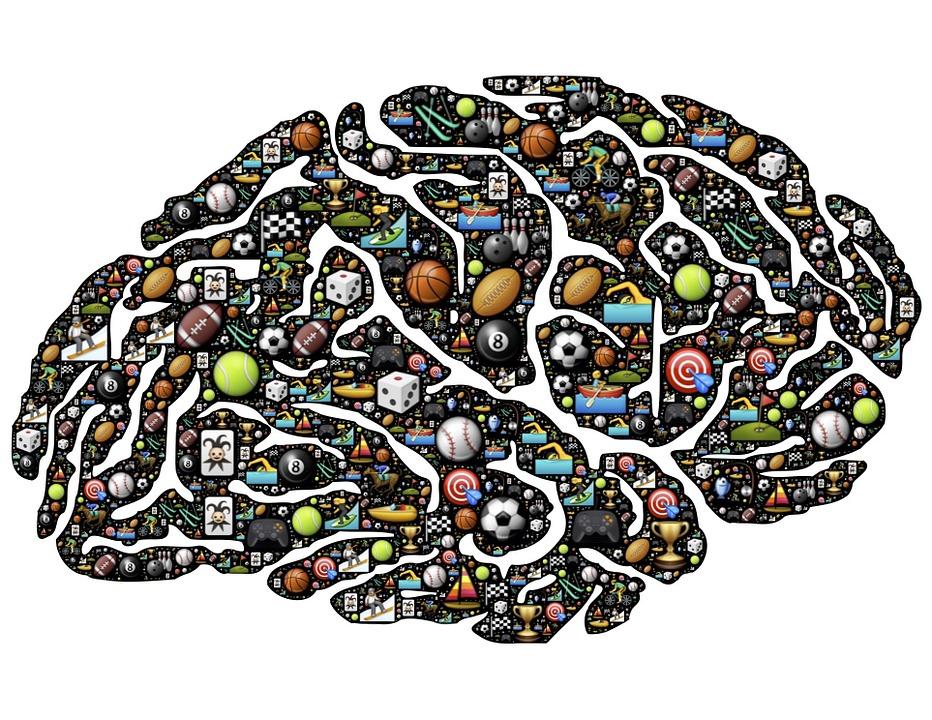 brain-954817_960_720.jpg
