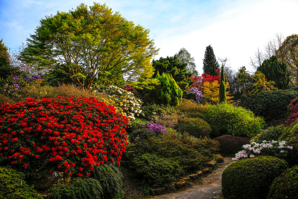 Leonardslee-Gardens.jpg