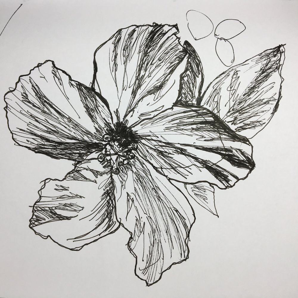 Flower drawing.JPG