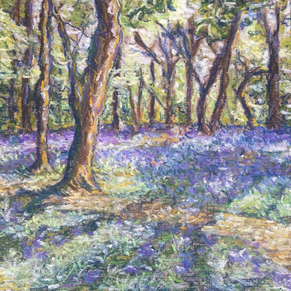 Alice Parsloe Art Bluebells.jpeg