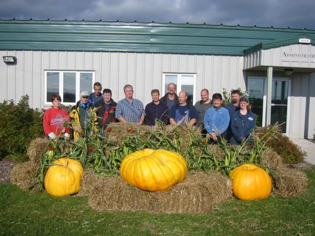 Pumpkins 2006.JPG