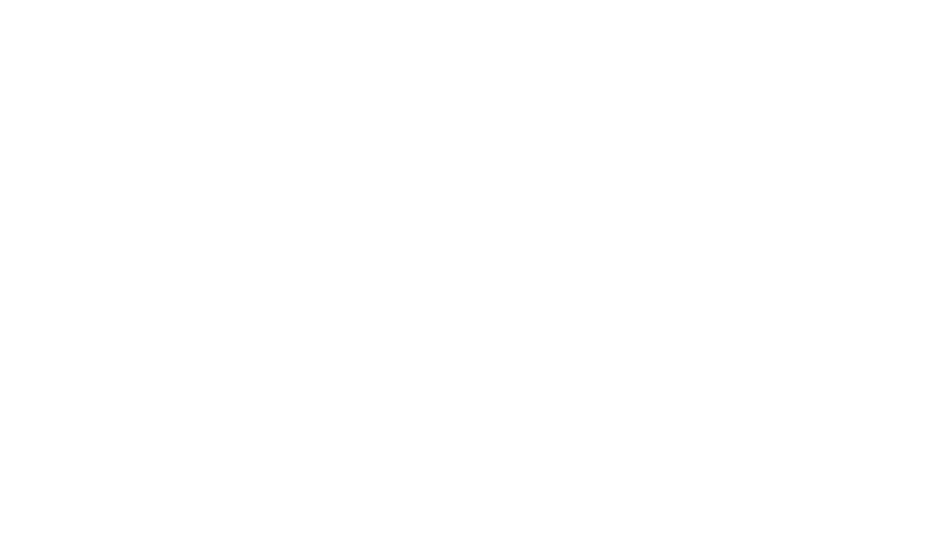 ADI International PEI