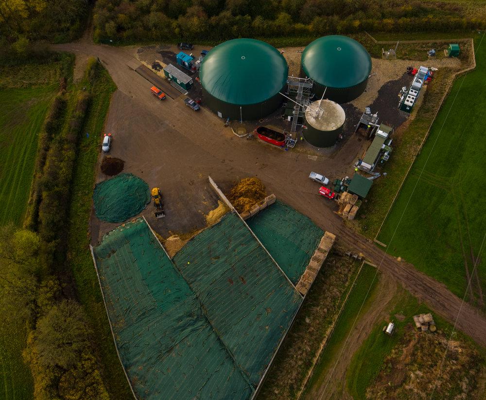 Qila Energy Tuxford.jpg