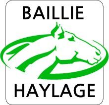 new_baillie_logo.jpg