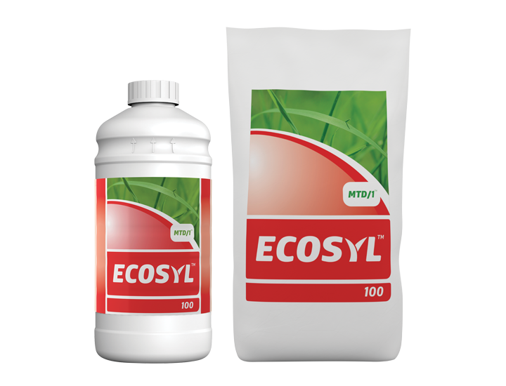 Ecosyl-100-.png