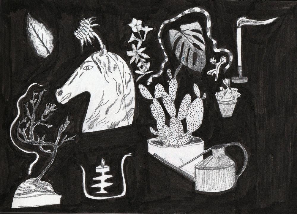 horsestuff.jpg