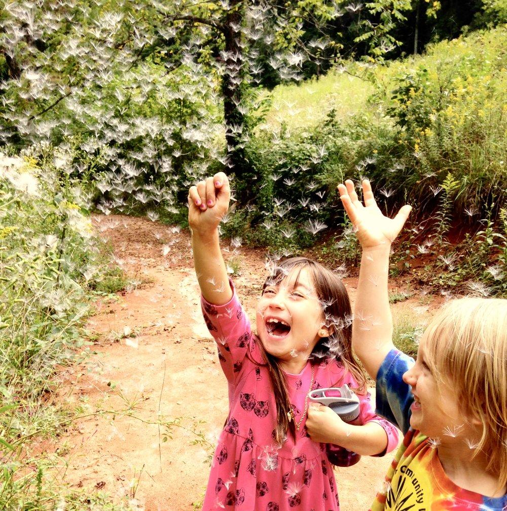 kinderforest -