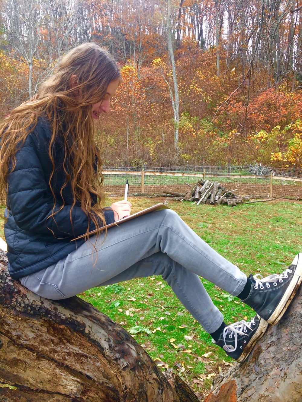 Copy of Academic studies can occur both indoors and outdoors on our pristine, 90 acre campus
