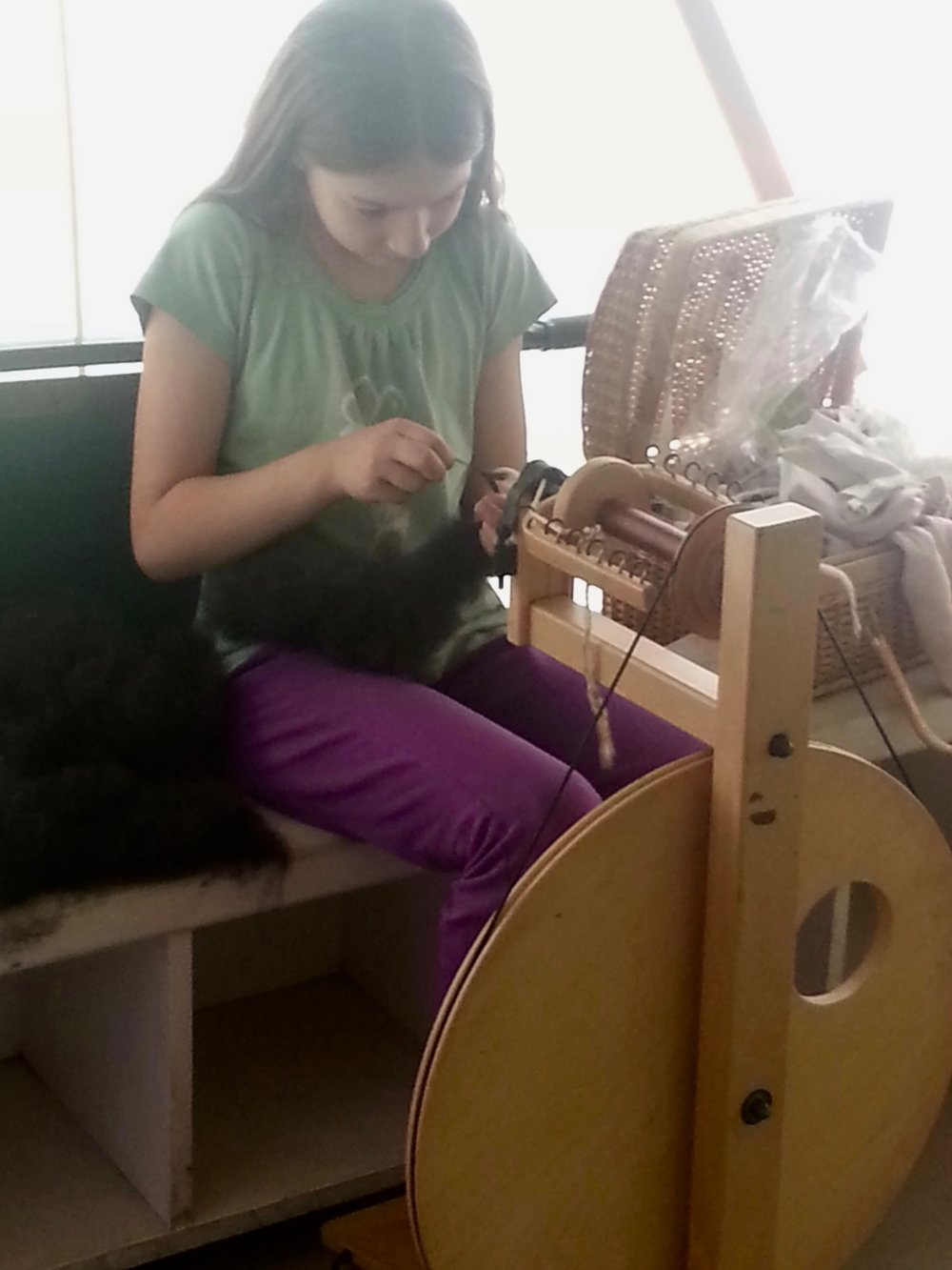 Spinning raw wool fibers from the sheep on our farm