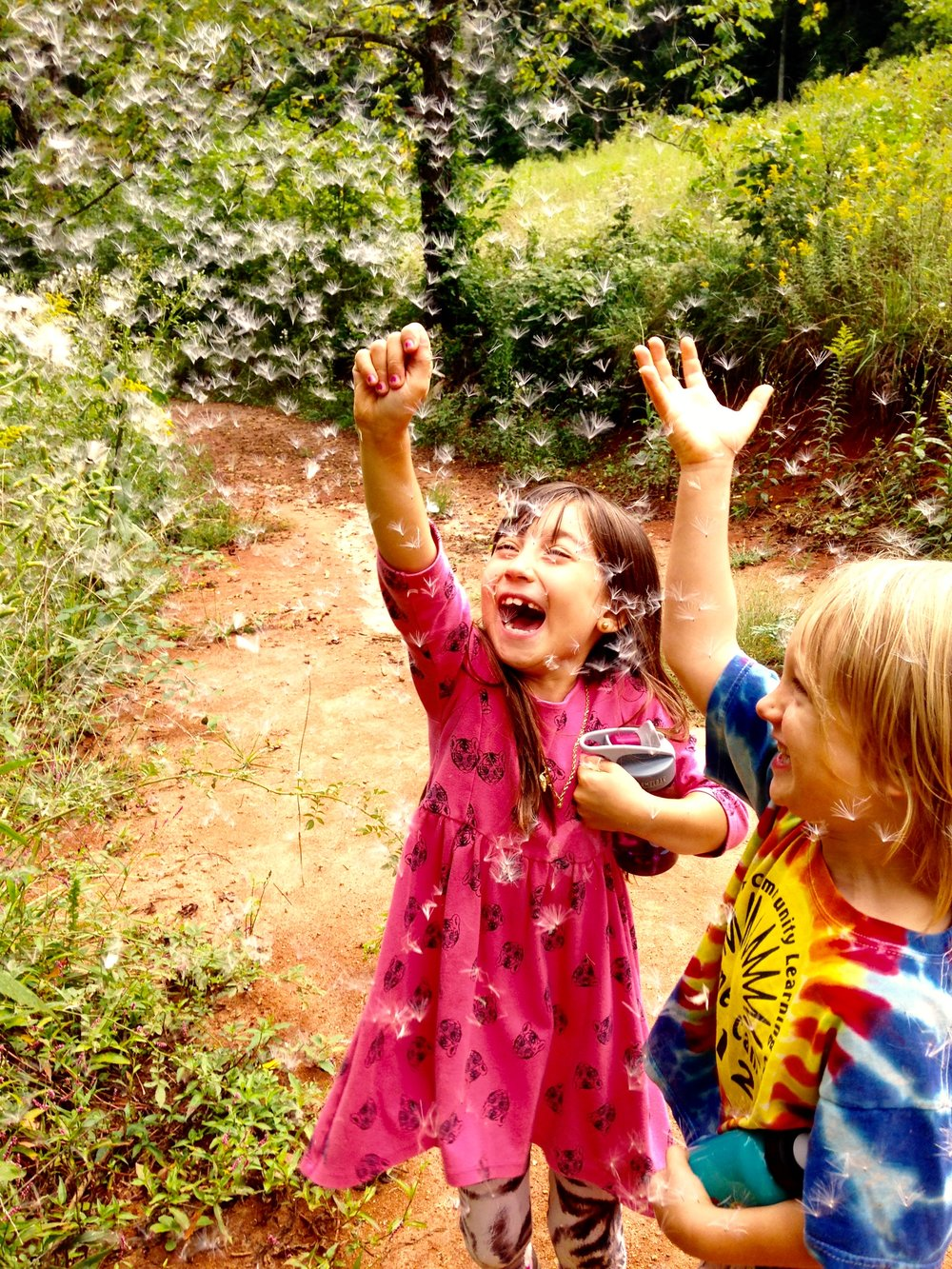The 'out-breath' of outdoor play- chasing 'starseeds' carried far and wide by the breeze.