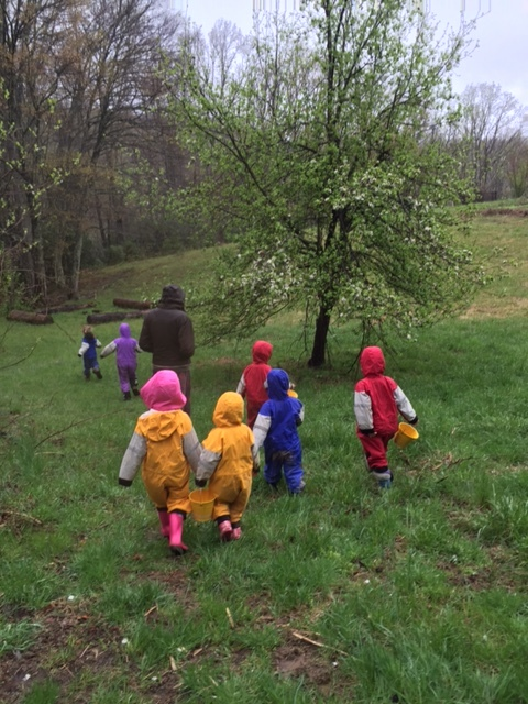 Leading the Starseeds into the forest on a rainy Spring morning, a teacher invites the children to experience the wetness of rain, the green-ness of grass, and budding apple blossoms