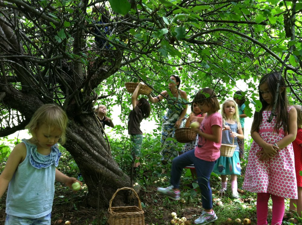 In the orchard, the apple trees reflect to children that all things grow and thrive- and offer sweet treats-when cared for with loving hands.