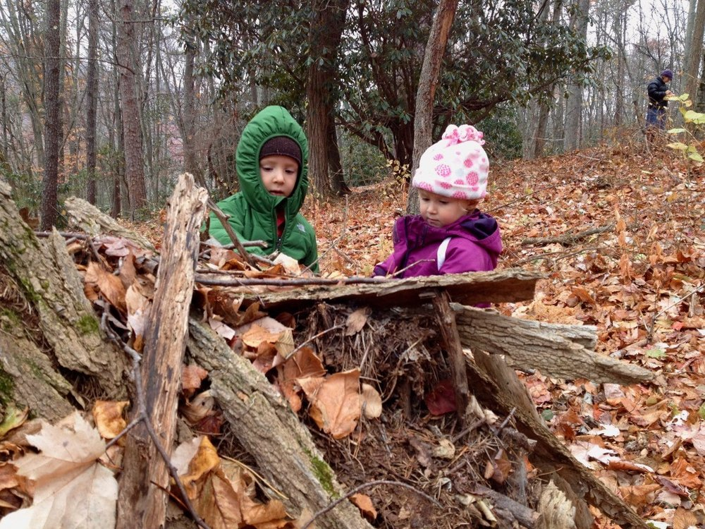 Building a fort in the forest