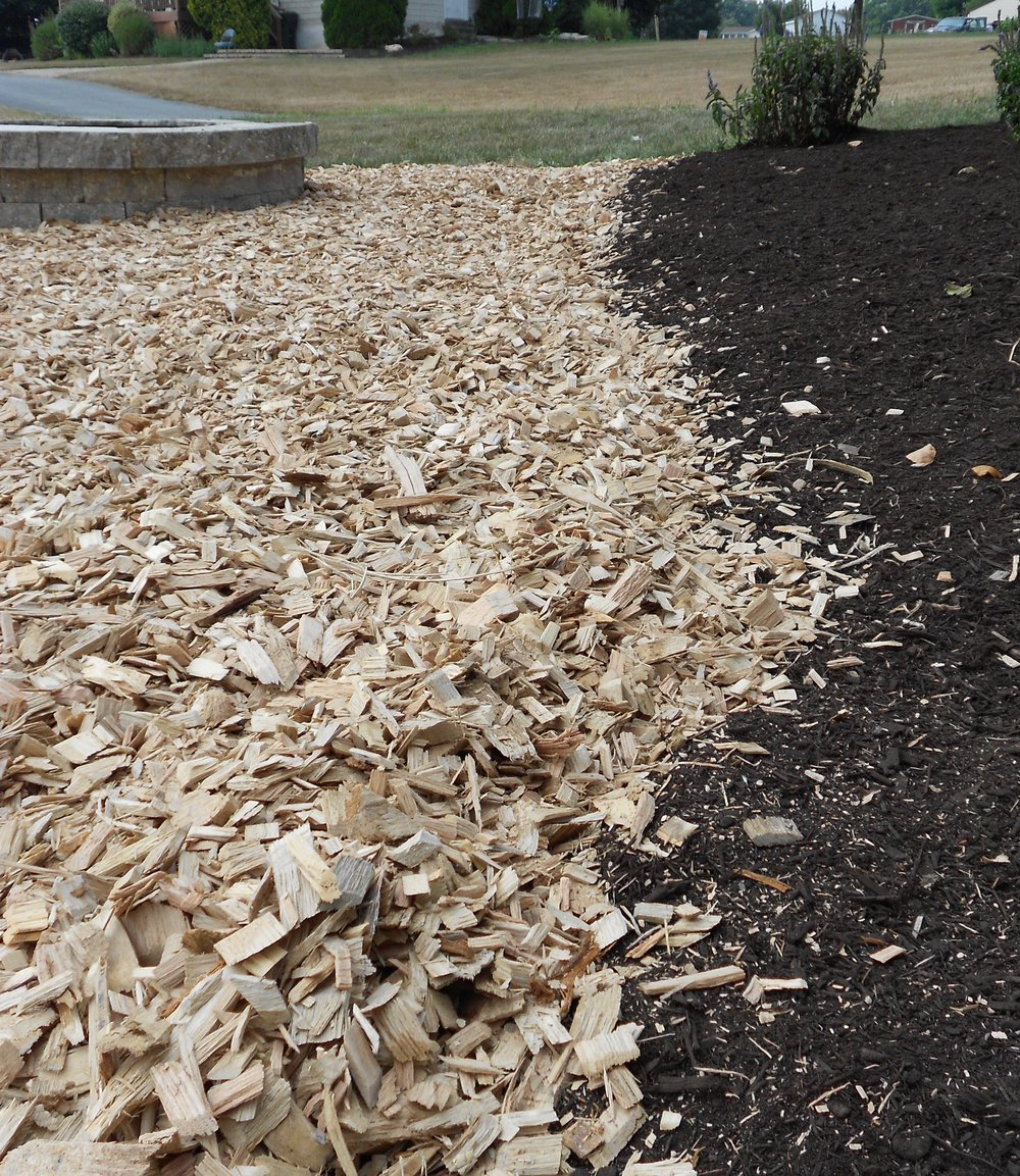 Cleanwoodchips.JPG
