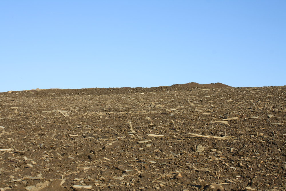 Topsoil on the pile out back.JPG