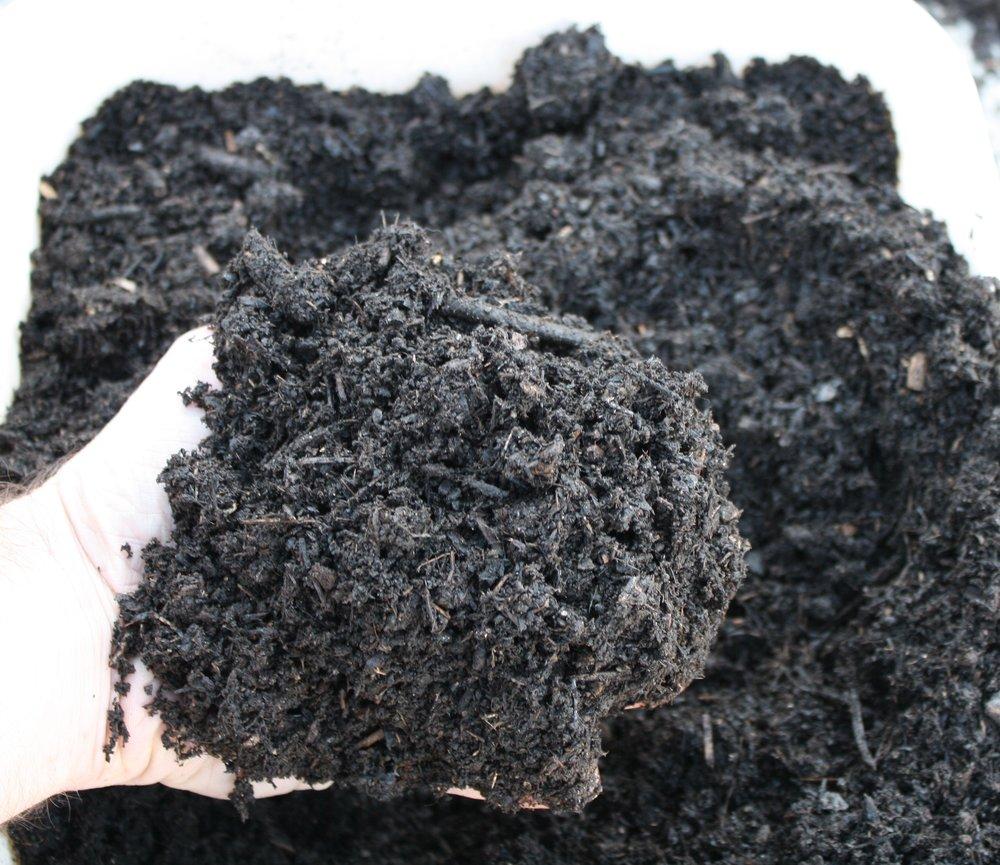 Leaf Compost w hand.JPG