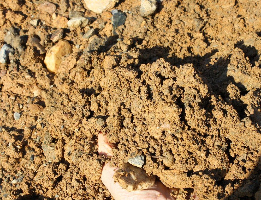 Fill Dirt w hand.JPG