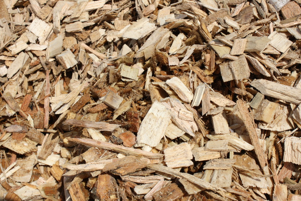Clean Wood chips for web.JPG