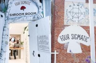 shroomroom1.jpg