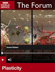 2015  BBC The Forum: Plasticity  (Audio) Bridget Kendall