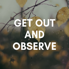 Get out and observe