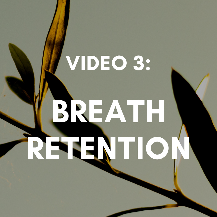 Video 3: 4-7-8 Breathing